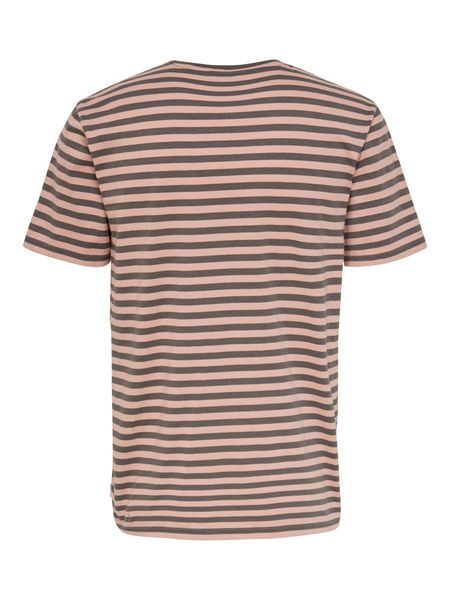 Jamie ss Stripe Regular Tee